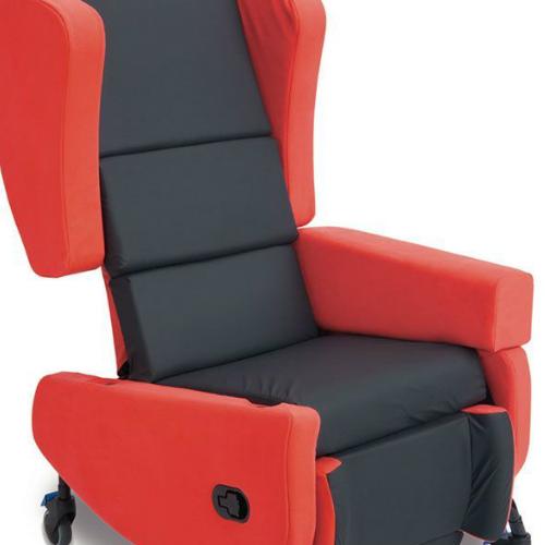 SeatSmart removable arm